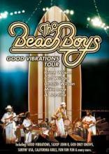 beach boys gvt